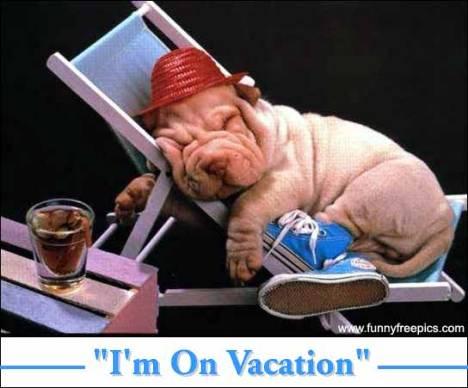 Wordless Wednesday: Vacation Alert